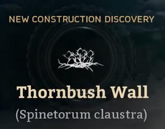 Thornbush Wall.png