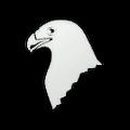 Enemy Eagle.png