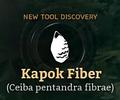 KapokFiber.png