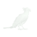 Parrot Icon.png
