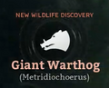 Giant Warthog.png