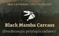 Black Mamba Carcass.png