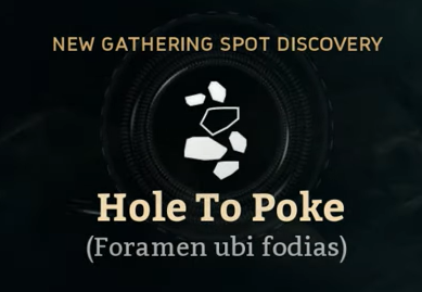 Hole To Poke.png
