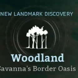 Savanna's Border Oasis