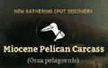 Miocene Pelican Carcass.png