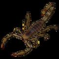 Scorpion (Leiurus quinquestriatus).png
