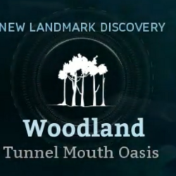 Tunnel Mouth Oasis