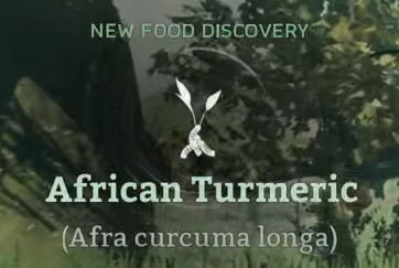 African Turmeric.png