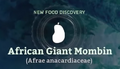 African Giant Mombin.png