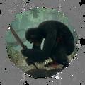 Dexterity - Proprioceptor Efficiency - BB WH 01.png