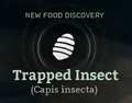 Trapped Insect.png