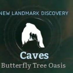 Butterfly Tree Oasis