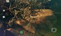 Thornbushes - Bushes of love.png