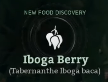 Iboga Berry.png