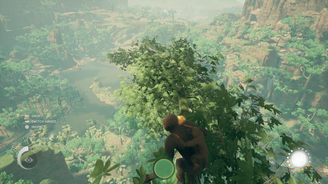 View From The Father Tree Overlooking The Crocodile Island.png