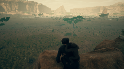 Savanna - Landscape 2.png