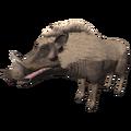 Giant Warthog (Metridiochoerus).png