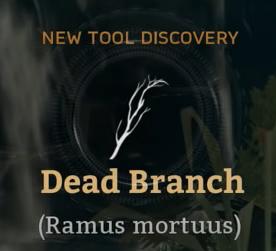 Dead Branch.png