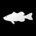 SenseIcon Bass.png