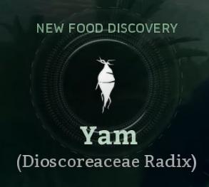 Yam.png