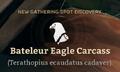 Bateleur Eagle Carcass.png