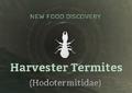 Harvester Termites.png