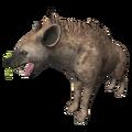 Hyena (Adcrocuta).png