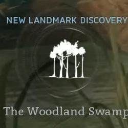 The Woodland Swamp