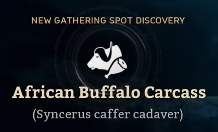 African Buffalo Carcass.png