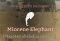 Miocene Elephant.png