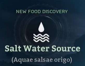 Salt Water Source.png