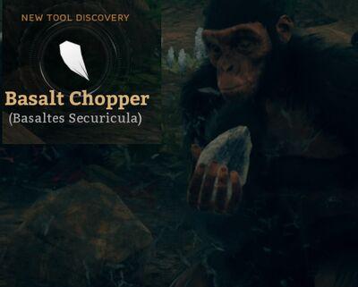 Basalt Chopper (Basaltes Securicula).jpg