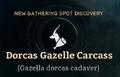 Dorcas Gazelle Carcass.png