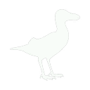 Seagull Icon.png