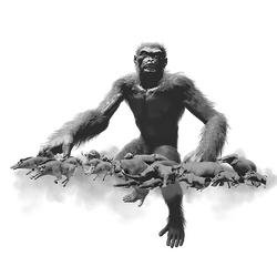Evolution Feat