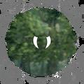 Therapeutic Medication - Venom Elimination - CT 03.png