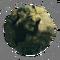Ardipithecus Ramidus - Locus of Control - ZO 03.png