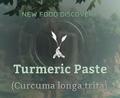 Turmeric Paste.png