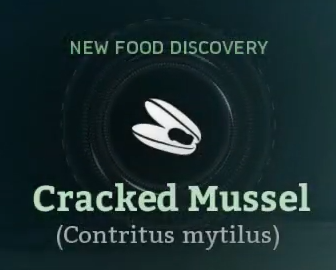 Cracked Mussel.png