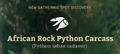 African Rock Python Carcass.png