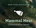 Mammal Meat.png