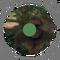 Australopithecus Afarensis - Life Expectancy - LF 03.png