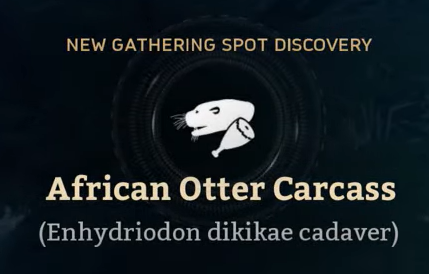 African Otter Carcass.png