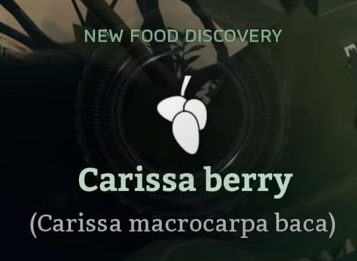 Carissa berry.png