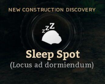 Sleep Spot (Locus ad dormiendum).jpg