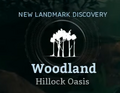 Hillock Oasis.png