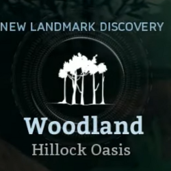 Hillock Oasis
