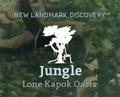 Lone Kapok Oasis.png