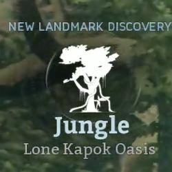 Lone Kapok Oasis