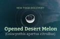 Opened Desert Melon.png